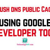 flush-dns-cache-public-local